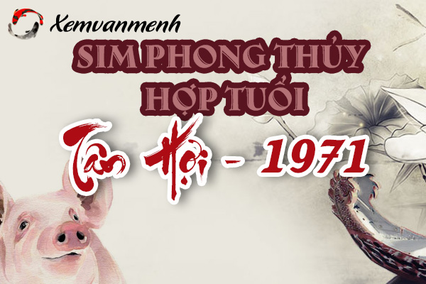 sim-phong-thuy-hop-tuoi-tan-hoi-1971