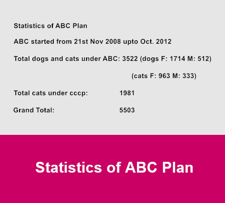 statistics of abc plan
