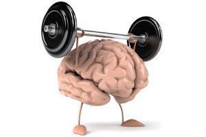 Resultado de imagem para cerebro ginastica