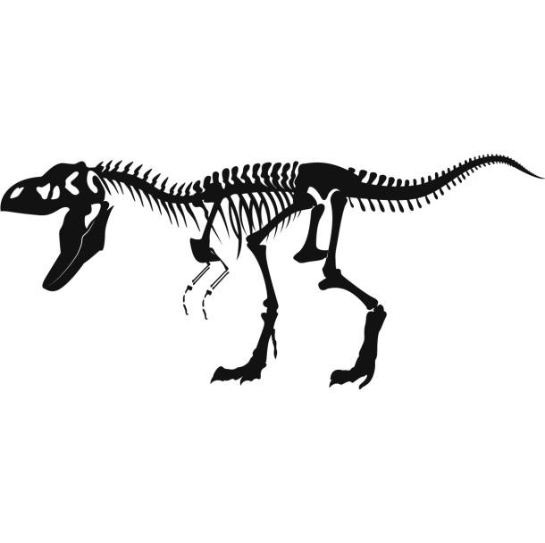http://iconwallstickers.co.uk/media/catalog/product/2-Jpegs/Skeleton-T-Rex-Dinosaurs-Wall-Decals-01.jpg