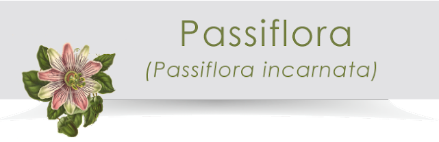 Ingredienti di Revit: la Passiflora