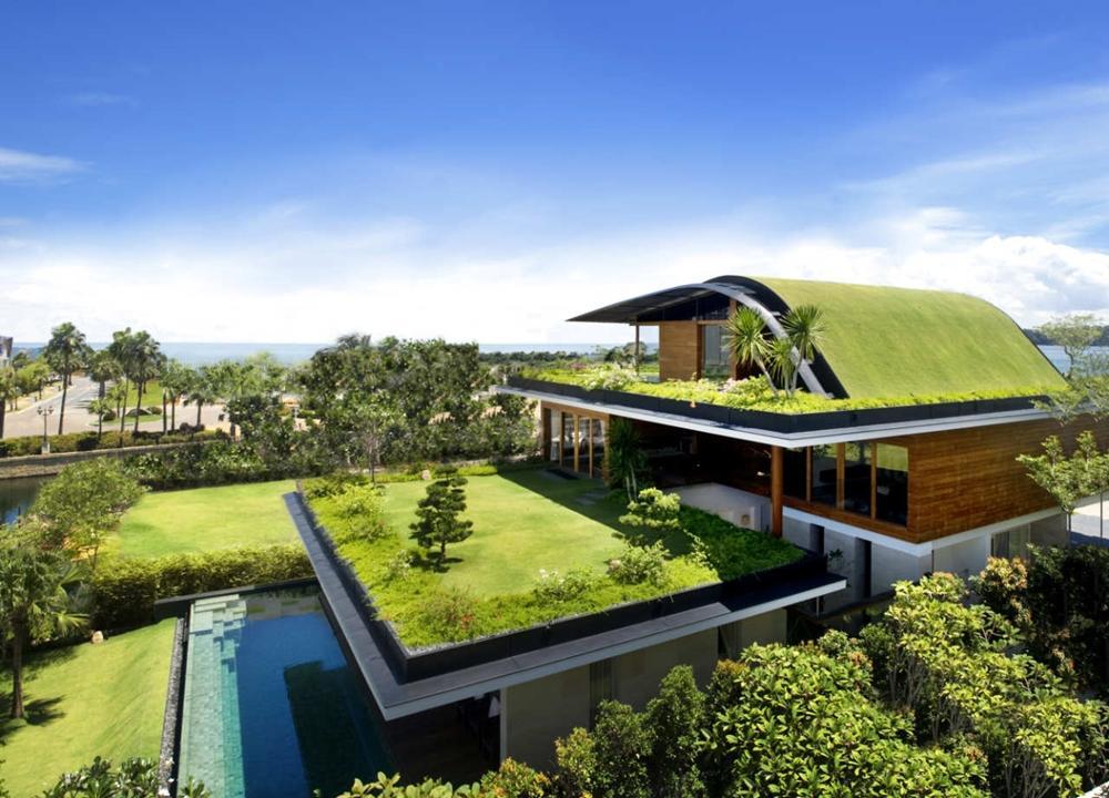Thiết kế nhà hiện đại với mái xanh