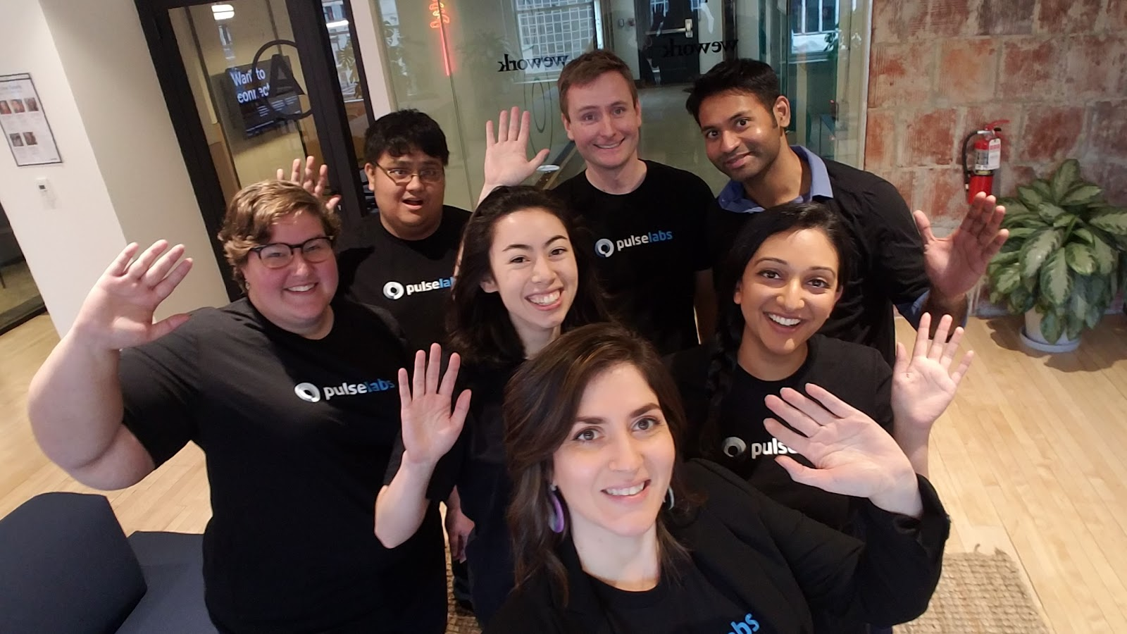 Pulse Labs team photo