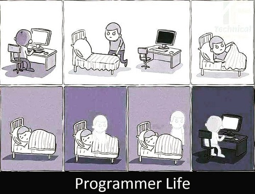 The life of a programmer in pictures
