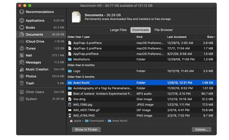 Phần Downloads: cung cấp cho bạn bảng phân tích các tệp và thư mục cũ