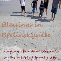 Grab button for Blessings in Brelinskyville