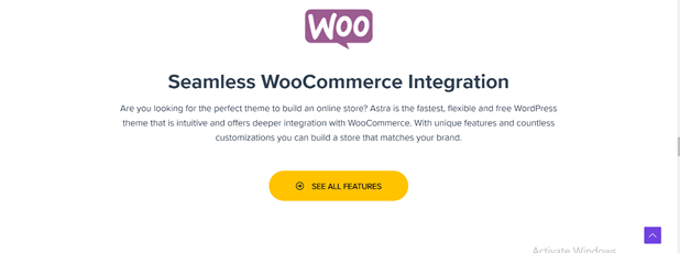astra woocommerce seamless integration