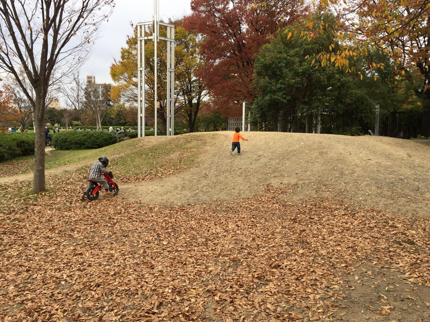 Children playing in the park surrounded by the colored autumn leaves.