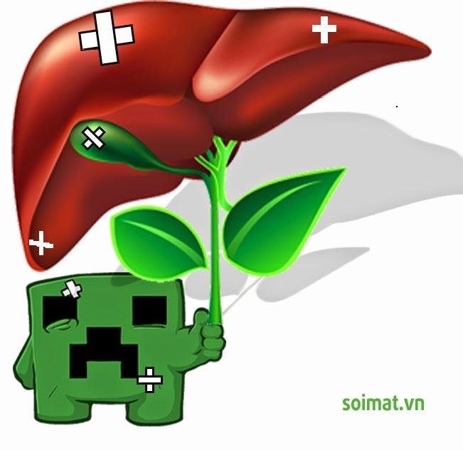 Cảnh báo lá gan bị ngộ độc