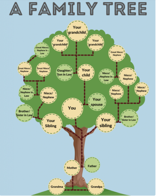 Users of Family Tree maker software are only a call away from the support. Yes, getting support now is that easy. If you are stuck or wondering how to use this great software then connect to our toll-free number today.