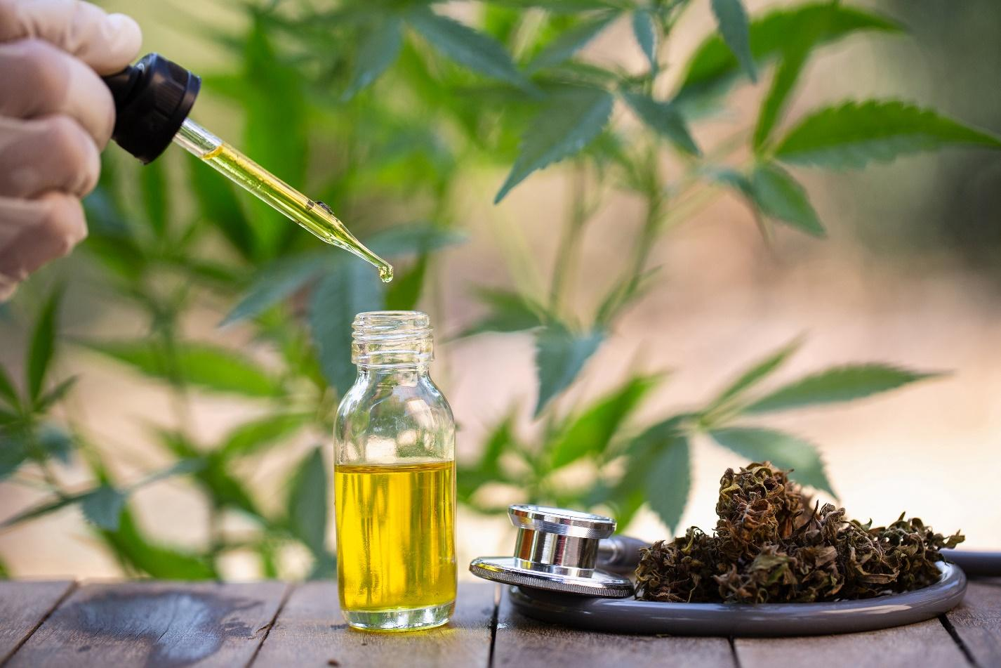 7 Things You Have To Know About CBD Oil