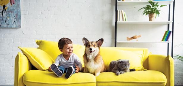 Dogs and Children: Healthier in Homes With Dogs   Modern Dog magazine