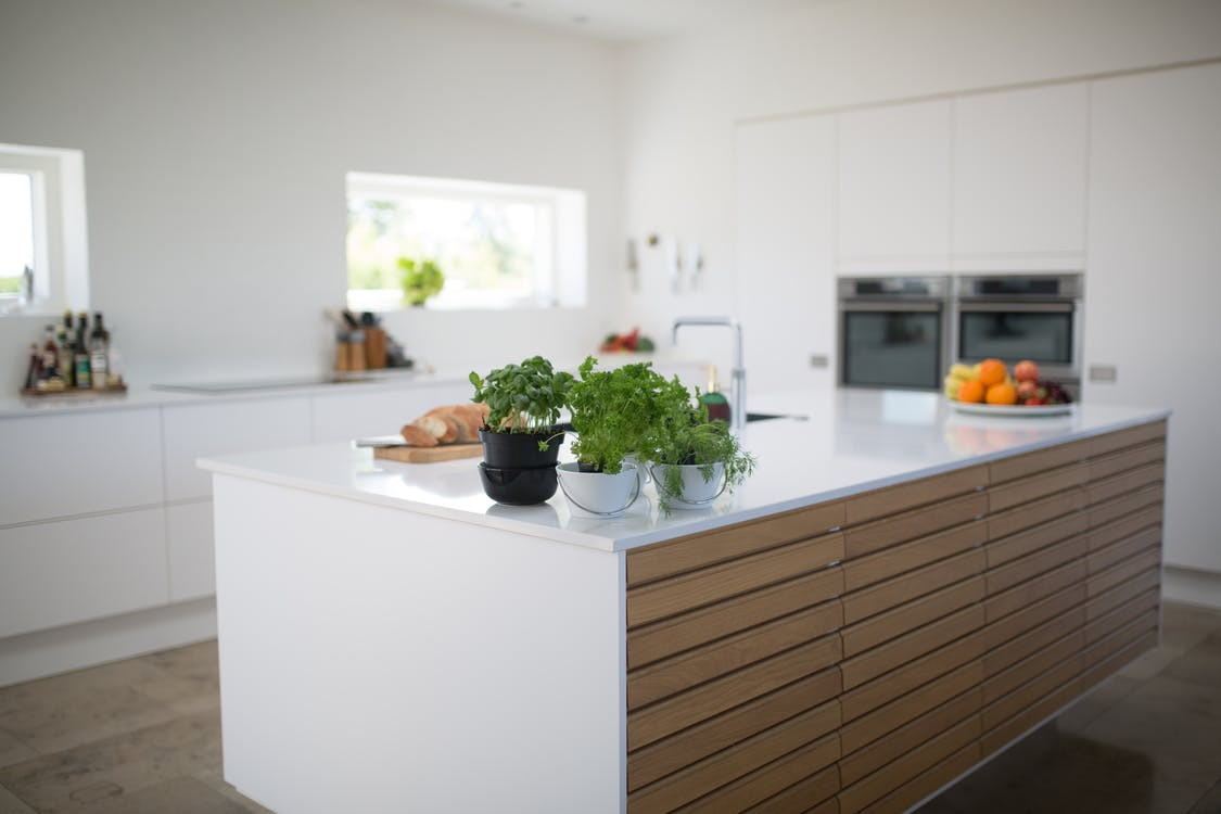 Green Leafed Plants On Kitchen Island