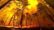 indexfire