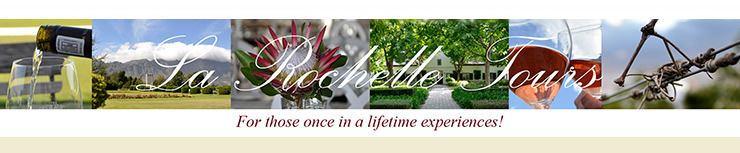 Full Day Cape Winelands Gourmet Delights Tour