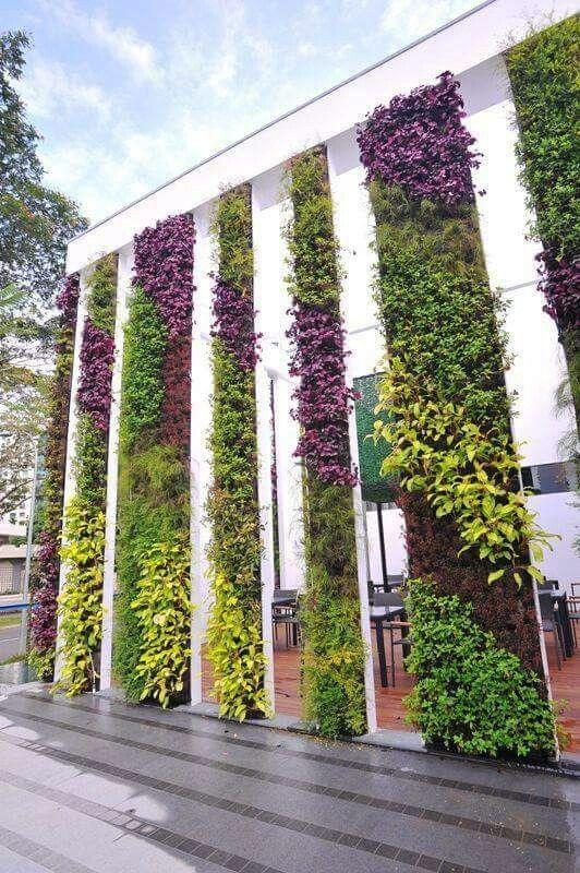 Living wall beautiful colours
