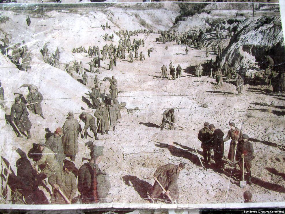 Советские военнопленные в овраге после расстрелов. Нацисты использовали Бабий Яр как место для казни советских военнопленных, цыган и других людей