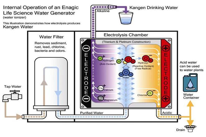 cấu-tạo-máy-lọc-nước-kangen