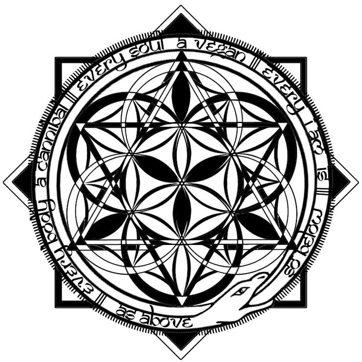 The Seventh Seal of Sol-OMan - While symbolized by this image, there are a multitude of variations used, revolving this same central theme. See more examples of it here: http://bit.ly/SeventhSealofSolOMan