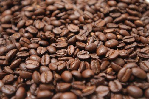 Địa chỉ cung cấp cà phê hạt giá sỉ hấp dẫn nhất thị trường- Motherland