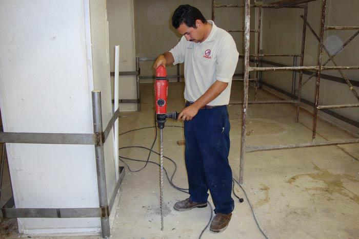 Termitas de concreto maximo fumigaciones servicio - Termitas en casa como matarlas ...