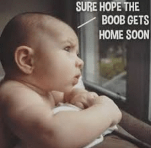 breastfeeding meme: sure hope the boob gets home soon!