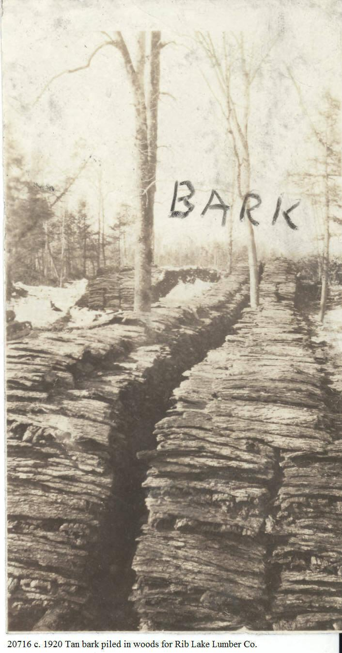 C:\Users\Robert P. Rusch\Desktop\II. RLHSoc\Documents & Photos-Scanned\Rib Lake History 20700-20799\20716 P. c. 1920 Hemlock bark piled in 100 ft plus long rows in Town of Corning, Lincoln Co.,.jpg