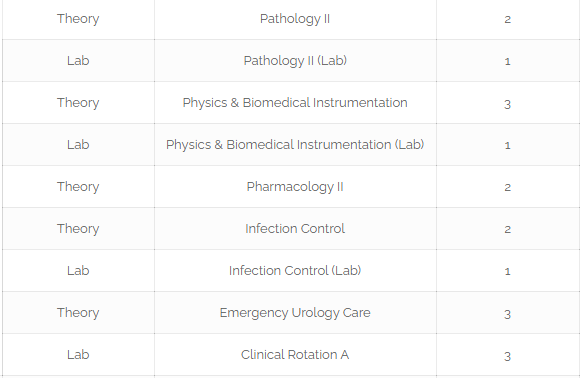Roadmap To become Pediatric Urologist In Pakistan [Detailed Guide] 5 - Daily Medicos