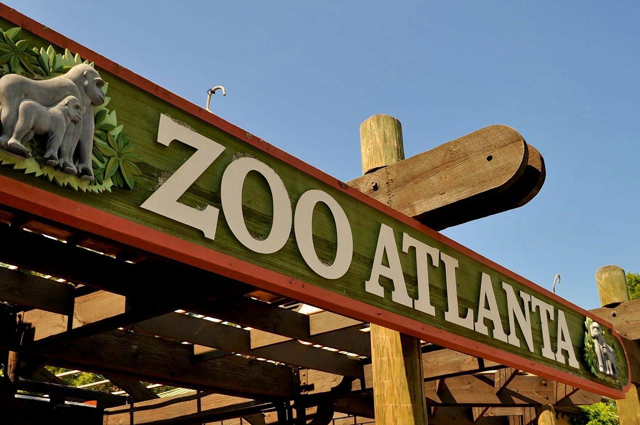 Зоопарк Атланта Живая Природа - Бесплатное фото на Pixabay