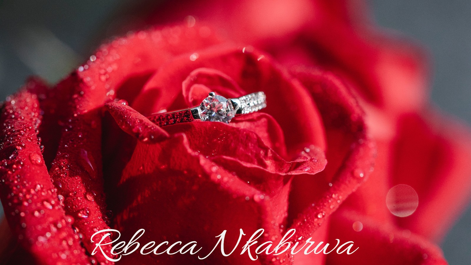 Rose flower with a wedding ring