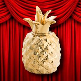 Abacaxi de Ouro: festival de cinema amador