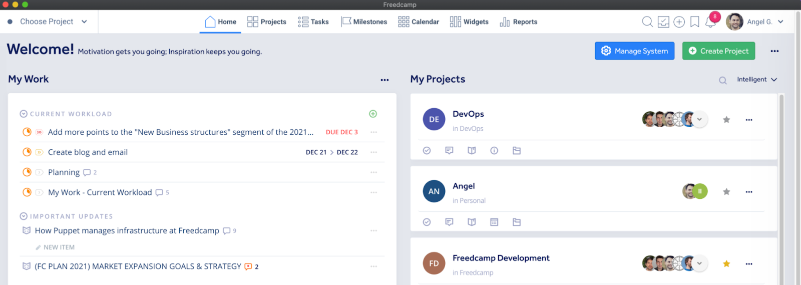 Freedcamp's interface