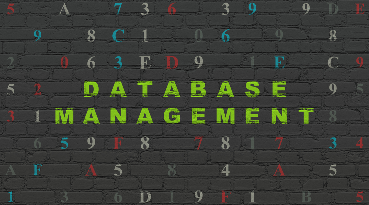 How to Maximize the Results You Get From Your Database