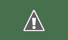 Chiado Editora - Parceira