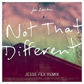 Not That Different (Jesse Fex Remix)