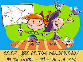 Carrera Solidaria Día de la Paz