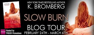 slow burn - blog tour.jpg