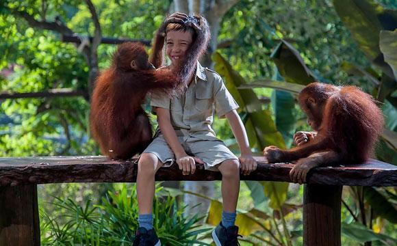 kebun binatang bali saybalitourcom.jpg
