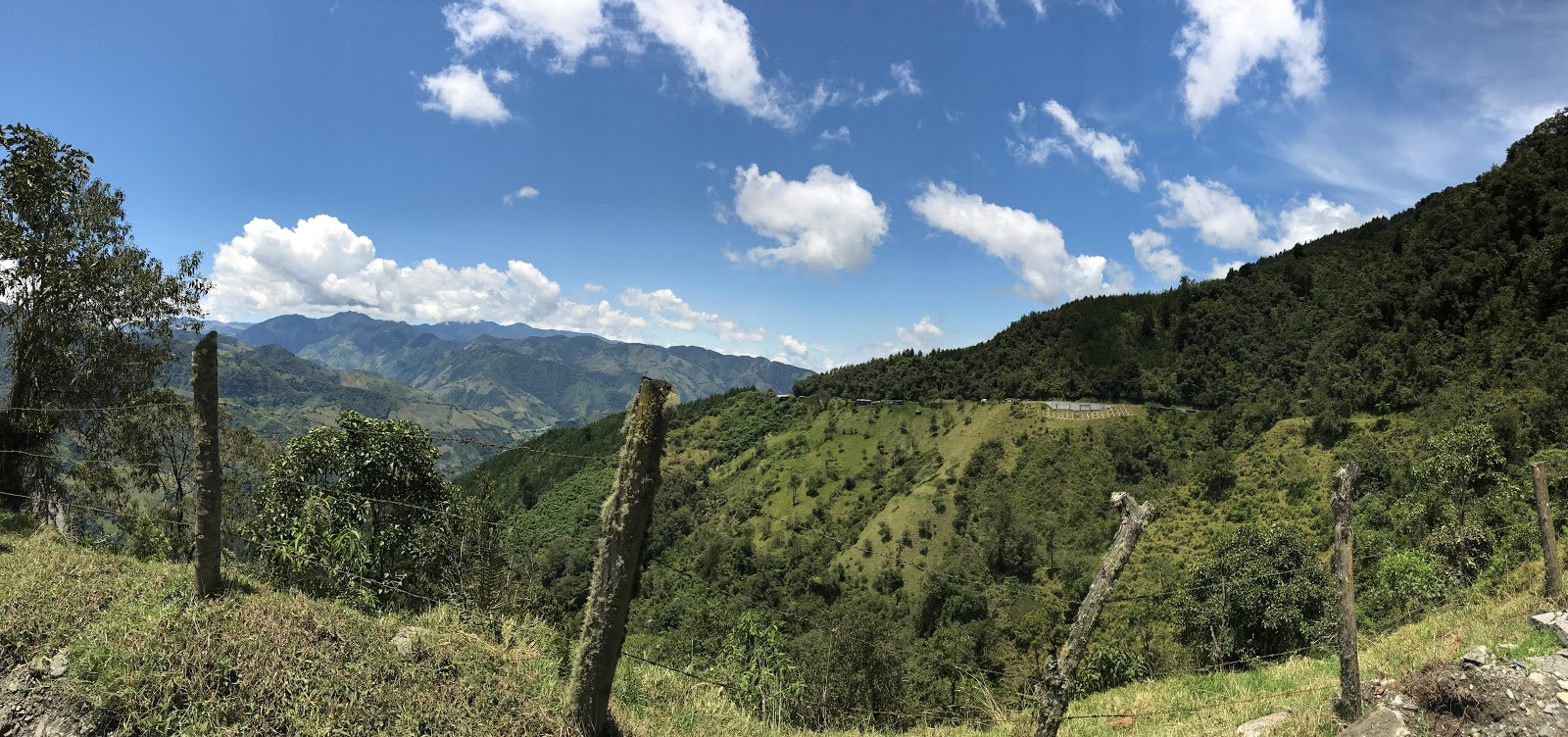 Riding bicycle up Hwy 50 to Alto de Letras - panorama of roadway, moss fence and mountains