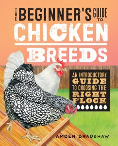 The Beginner's Guide to Chicken Breeds book