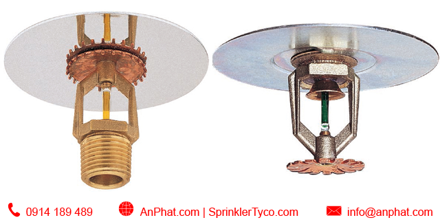 Đầu phun nước chữa cháy sprinkler Tyco