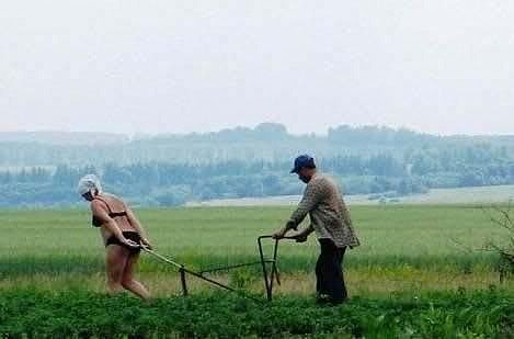 http://i68.photobucket.com/albums/i10/rangebrass/in_russia_women_pull_plow.jpg