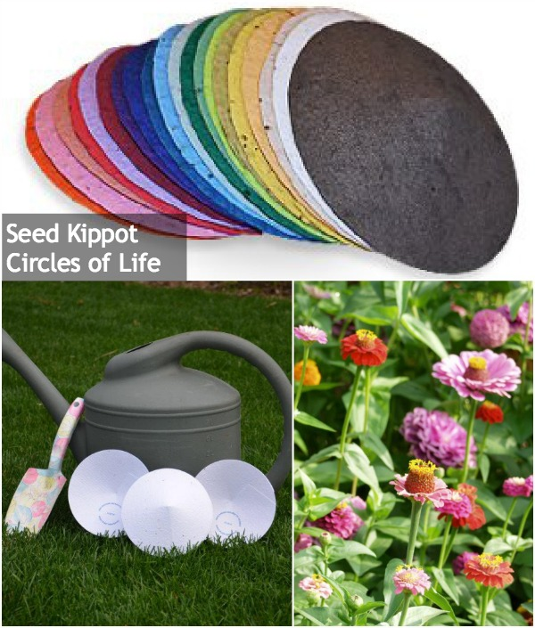 Eco-Friendly-Kippot.jpg