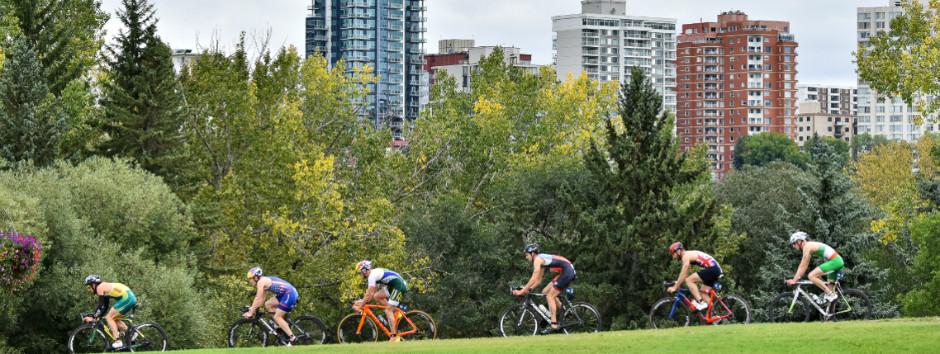 WTS Edmonton.jpg