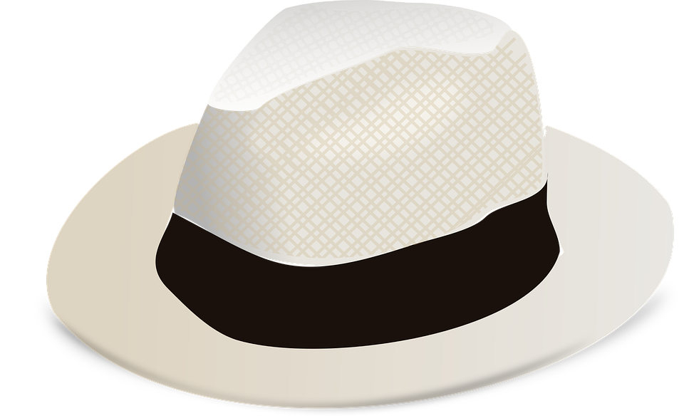 http://maxpixel.freegreatpicture.com/static/photo/1x/Panama-Heritage-Panama-Hat-Hat-Fashion-1294007.png