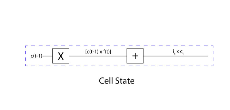 A picture shows the structure and functioning of the Cell Gate.