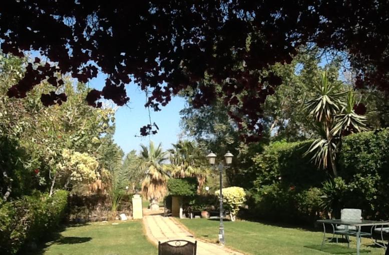 مساحات واسعة من فندق رامادا - فنادق العين السخنة 3 نجوم