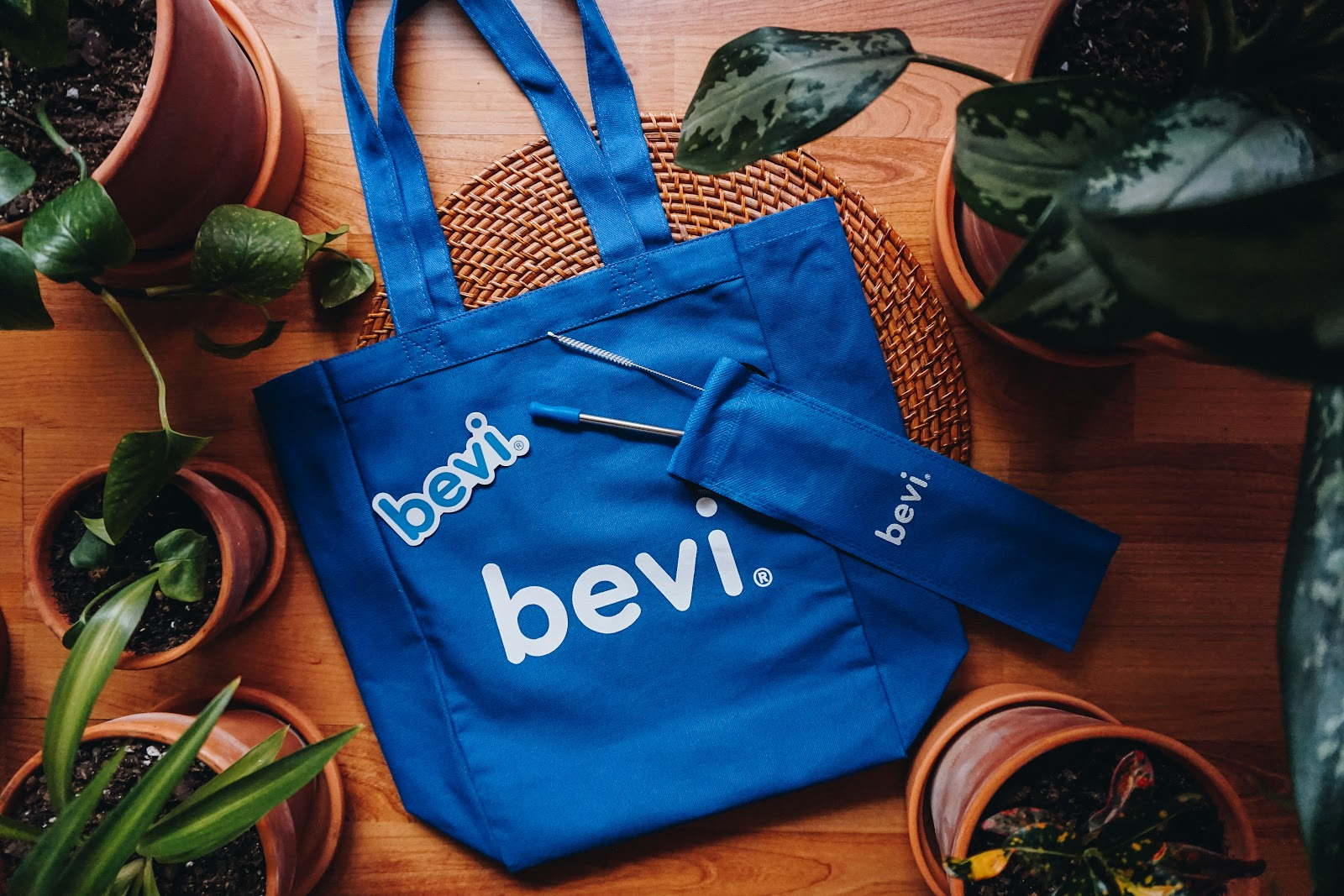 Bevi Smart Water swag - stainless steel straw