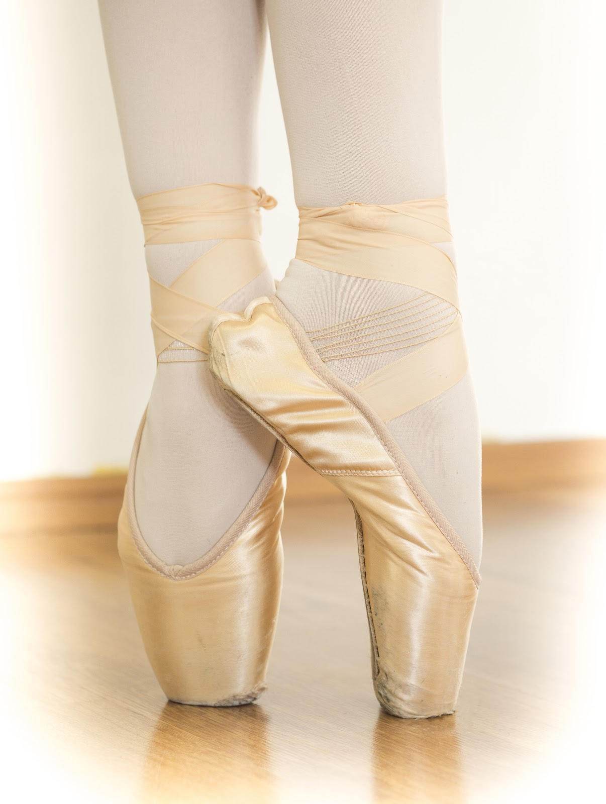 https://upload.wikimedia.org/wikipedia/commons/c/c4/Ballet_shoes_%28Russian_ballet_school_%D0%9C._%D0%98%D1%81%D0%B0%D0%B5%D0%B2%D0%B0%29.jpg