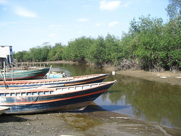 Las orillas del Río Zarumilla, en el departamento de Tumbes